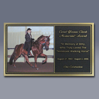 CC Recognition Horse Plate
